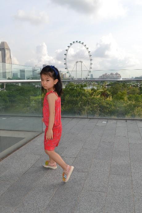 美丽的新加坡
